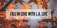 Fall in Love with LAL_v2_200x100.png